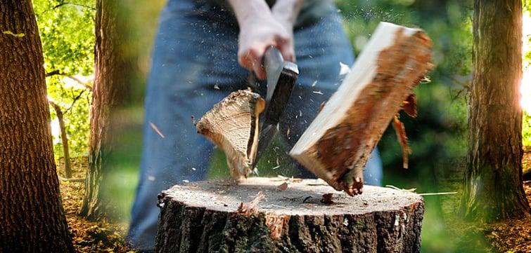 Zen chop wood.jpg